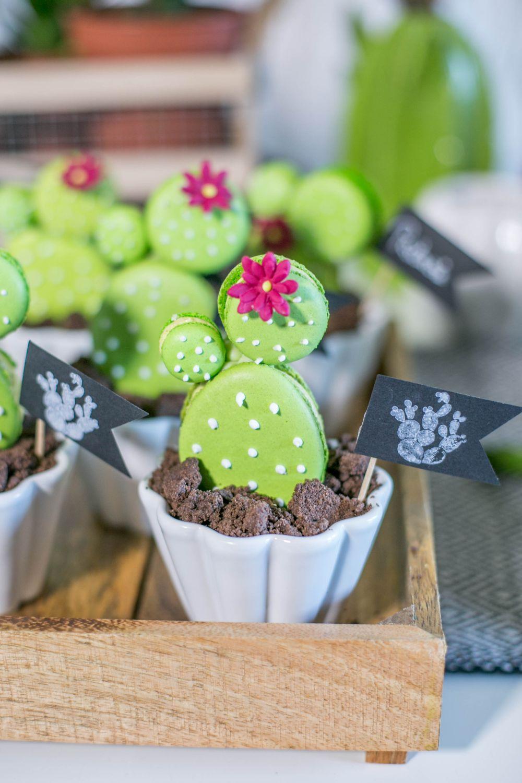 macaron kaktus