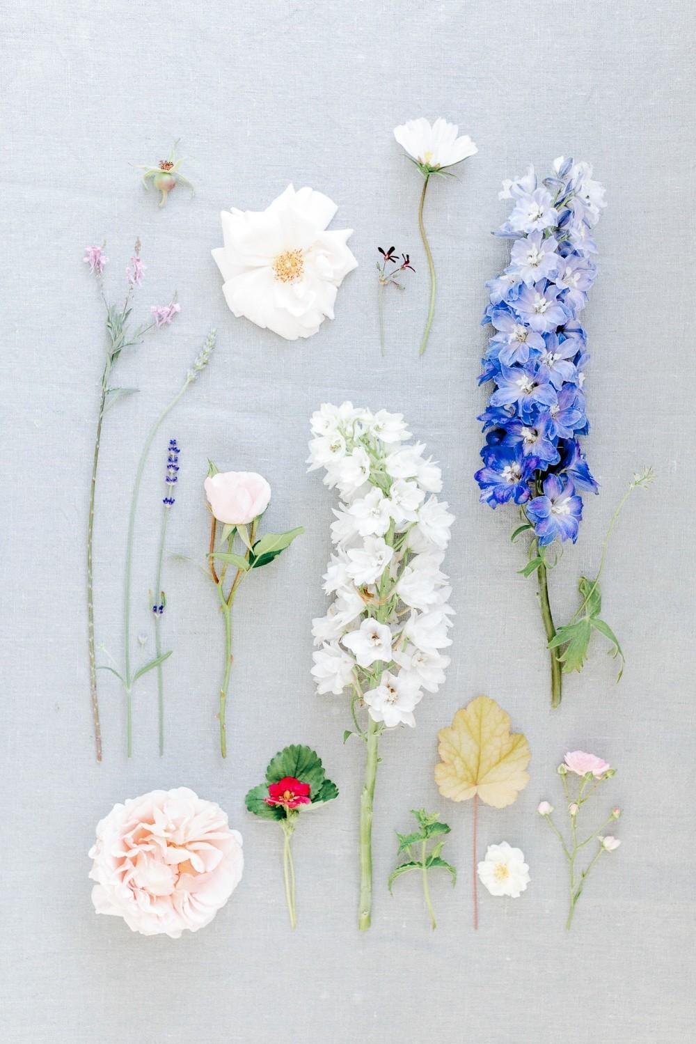Gartenblumen-Hochzeit-