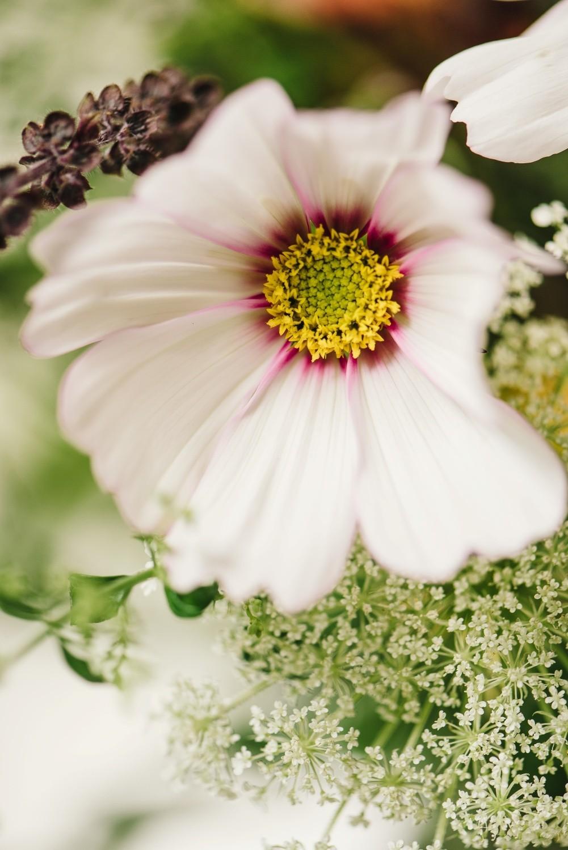 slowflowers-hochzeit-