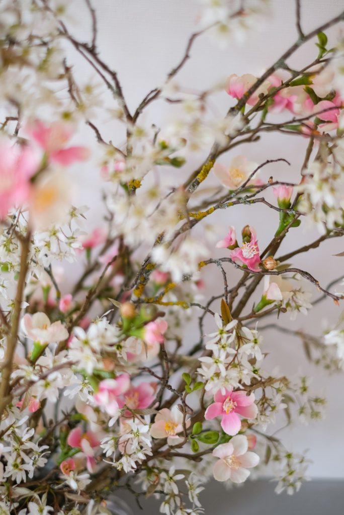 Frühling-rezept